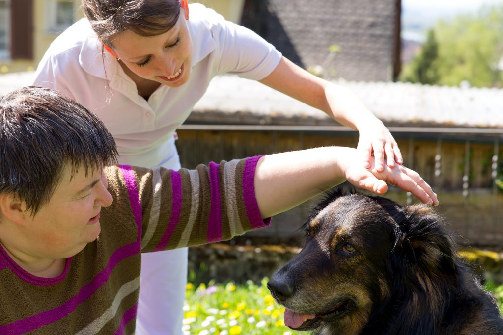 Therapy animals help people with mental disabilities.